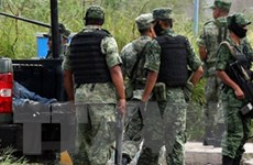 Bạo lực tại Mexico, 36 người thiệt mạng chỉ trong 3 ngày cuối tuần