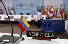OAS triệu tập cuộc họp bất thường để bàn về tình hình Venezuela
