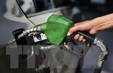 Dự trữ dầu thô của Mỹ bất ngờ giảm đẩy giá dầu thế giới đi lên