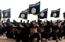 Mỹ cảnh báo nguy cơ từ các ''chân rết'' của IS trên thế giới