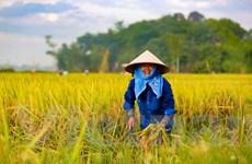 CPTPP tác động tích cực đến nông dân và ngư dân Việt Nam