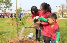 Hà Nội: Thêm 500 cây hoa anh đào được trồng tại Công viên Hòa Bình