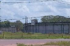 Bạo loạn nhà tù ở miền Bắc Brazil, ba đối tượng bị bắn chết