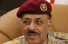 Yemen: Em trai ông Saleh được bổ nhiệm làm tư lệnh quân đội