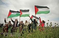 Tổng thống Palestine tuyên bố Quốc tang tưởng niệm 16 người chết