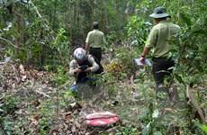 Kon Tum: Lâm tặc dùng vũ khí nóng, uy hiếp, đánh nhân viên bảo vệ rừng