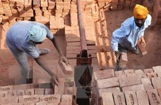 Vai trò của doanh nghiệp trong cuộc chiến chống nô lệ thời hiện đại