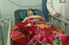 Thách đố nhau uống thuốc trừ sâu, 4 nữ sinh nguy kịch nhập viện