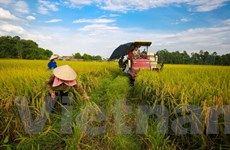 Công bố sách kinh tế xanh phát triển bền vững trong biến đổi khí hậu