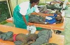 Dịch tả bùng phát tại Malawi, 30 người chết và 900 người mắc bệnh
