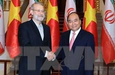 Việt Nam luôn coi trọng quan hệ hữu nghị truyền thống với Iran