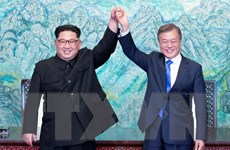 Chuyên gia Nhật Bản đánh giá cao thành công ngoại giao của Hàn Quốc