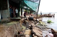 Hậu Giang: Sạt lở nghiêm trọng, gần 30m đường bêtông trôi xuống sông