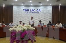 Lào Cai: Công bố nguyên nhân cây trồng bị táp lá, dứa thối ở Bản Lầu