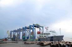Quảng Ngãi xuất khẩu năm cẩu trục bánh lốp đến Ấn Độ