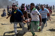 Palestine yêu cầu được quốc tế bảo vệ trước các hành động của Mỹ
