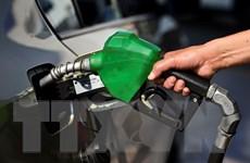 Giá dầu Brent lần đầu phá ngưỡng 80 USD mỗi thùng kể từ 2014