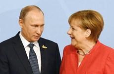 Lãnh đạo Nga, Đức thảo luận nhiều vấn đề quốc tế quan trọng