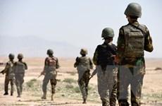 Quân đội Afghanistan truy quét tiêu diệt hơn 60 tay súng Taliban