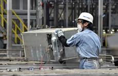 Nhật Bản có kế hoạch tăng cường tiếp nhận lao động nước ngoài