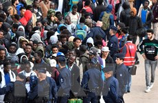 Các nước Liên minh châu Âu vẫn bế tắc trong cải cách luật tị nạn