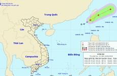 Chủ động ứng phó với áp thấp nhiệt đới trên khu vực Biển Đông