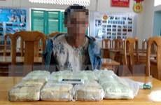 Phá vụ vận chuyển gần 48.000 viên ma túy tổng hợp từ Lào về Việt Nam