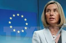 EU hoan nghênh ''lệnh ngừng bắn lịch sử'' ở Afghanistan