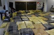 Paraguay tịch thu gần 170 tấn cần sa tại khu vực biên giới với Brazil