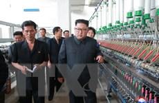 Hàn Quốc: Triều Tiên có nhà lãnh đạo chăm lo cho người dân