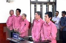 Trả hồ sơ để điều tra bổ sung vụ phá rừng quy mô lớn tại Bình Định
