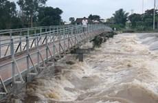 Theo dõi chặt chẽ diễn biến mưa, lũ khu vực Đồng bằng sông Cửu Long
