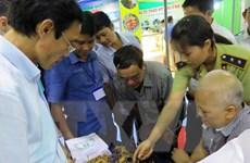Quảng Nam tổ chức lễ hội tôn vinh hương sắc sâm Ngọc Linh