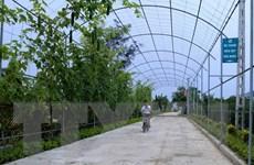 Tổng kết 10 năm thực hiện Nghị quyết Trung ương 7 khóa X về tam nông
