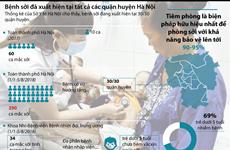[Infographics] Bệnh sởi xuất hiện tại tất cả các quận ở Hà Nội