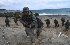 Hàn Quốc: Mỹ chưa đề nghị đàm phán nối lại các cuộc tập trận chung
