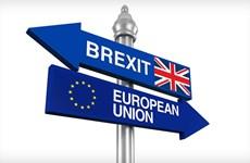 EU cảnh báo vấn đề biên giới Ireland có thể làm nguy hại đến Brexit