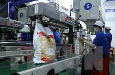 Xuất khẩu gạo được kỳ vọng sẽ sôi động hơn trong quý cuối năm