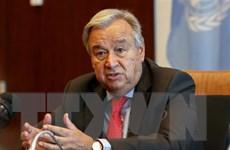 Liên hợp quốc hoan nghênh cam kết phi hạt nhân hóa của Triều Tiên