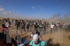 Tổng thống Mỹ thừa nhận không dễ đem lại hòa bình cho Trung Đông