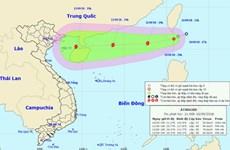 Sáng sớm 11/9, áp thấp nhiệt đới vào Biển Đông, mạnh lên thành bão