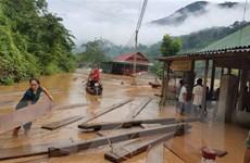 Nghệ An: Lũ quét bất ngờ trong đêm, có nơi ngập sâu 1,5m