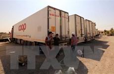 Syria sẽ trao ưu tiên trong công cuộc tái thiết cho các đồng minh