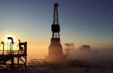 Giá dầu châu Á tăng lên mức cao nhất trong vòng 4 năm qua