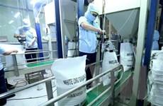 Ngành gạo Việt Nam trước xu thế tự do hóa thương mại hoàn toàn