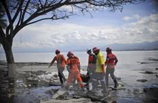 Thiên tai ở Indonesia: Cơn sóng thần cao nhất đo được lên tới hơn 11m