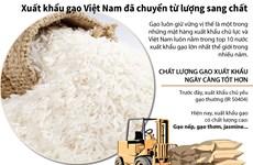 [Infographics] Xuất khẩu gạo Việt Nam đã chuyển từ lượng sang chất