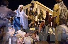 Algeria bác bỏ cáo buộc ngược đãi người di cư của Liên hợp quốc