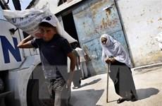 Canada viện trợ 38 triệu USD cho cơ quan LHQ cứu trợ người Palestine