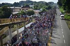 Mỹ lập kế hoạch triển khai 1.000 binh sỹ tới biên giới Mexico